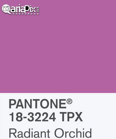 رنگ مد سال 2014,رنگ مد سال,رنگ مدل امسال سال 93