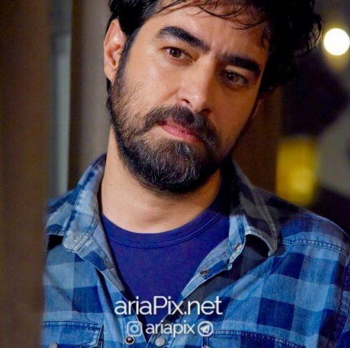 عکسهای شهاب حسینی